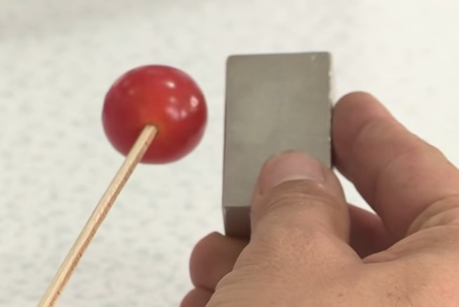 Magnetic Tomatoes