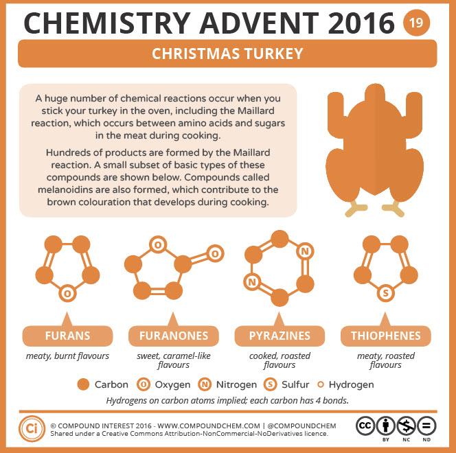Christmas Turkey Chemistry
