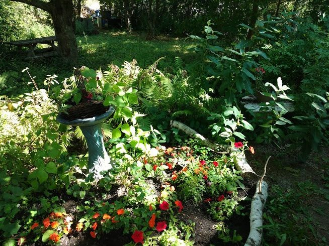 A naturalized yard: making a difference – submitted by Dave Gervais